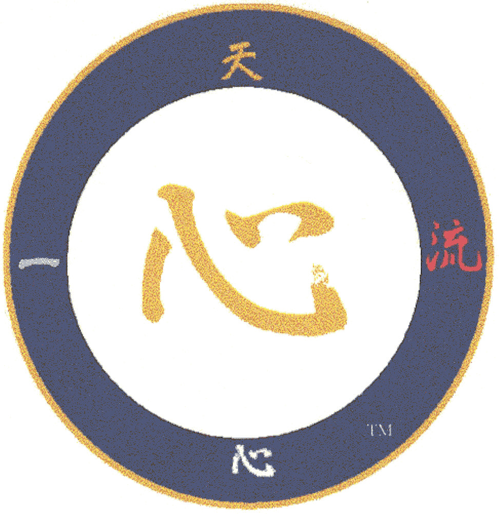 Ten Shin Ichi Ryu patch